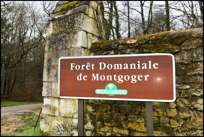 Calendrier de Chasse en forêt de Montgoger